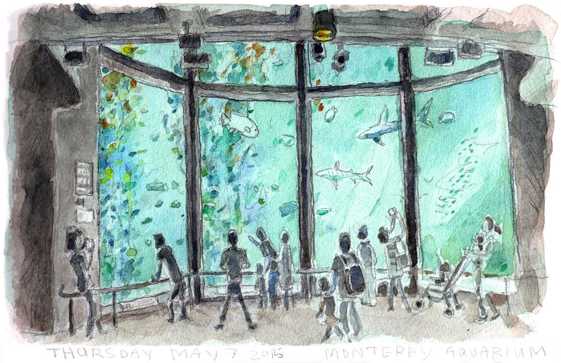 Monterey_Aquarium_4